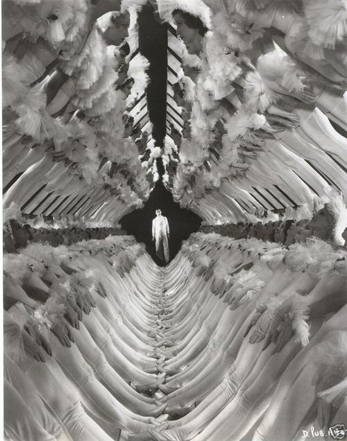 75ae0a0ca29c943e06c3d38b36cb6ee6--trippy-photos-busby-berkeley